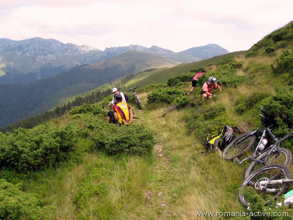 Bike MTB cyclists 600